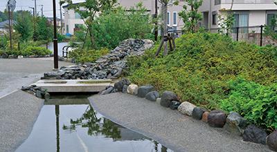 井戸水を活用した親水公園